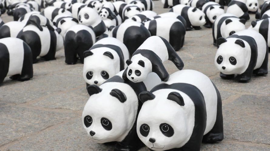 pandas Python