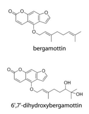 bergamottin_and_DHB